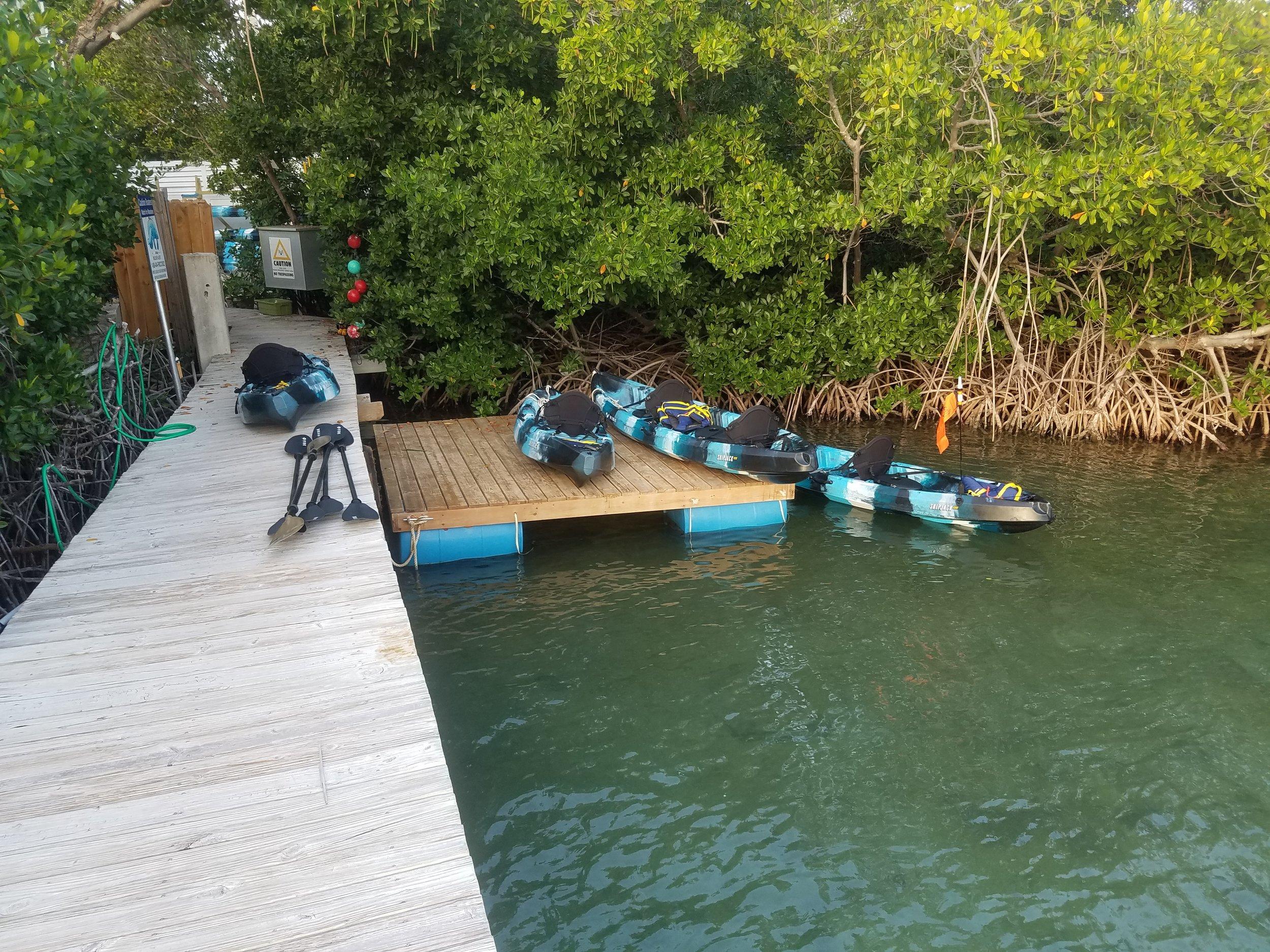 Kayak Tour 2.jpg