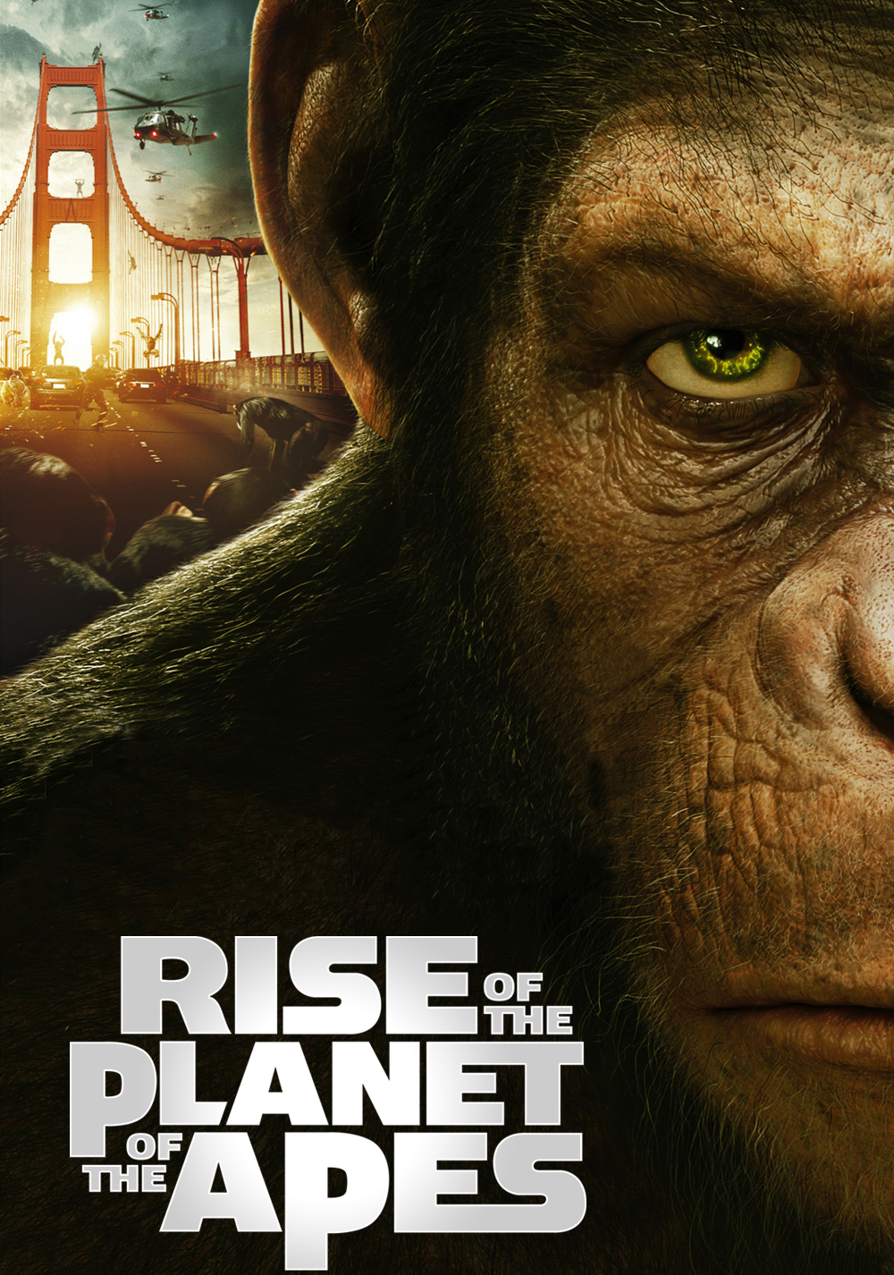 rise-of-the-planet-of-the-apes-52f99f227c310.jpg