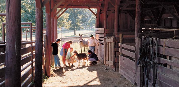 heifer-ranch.png