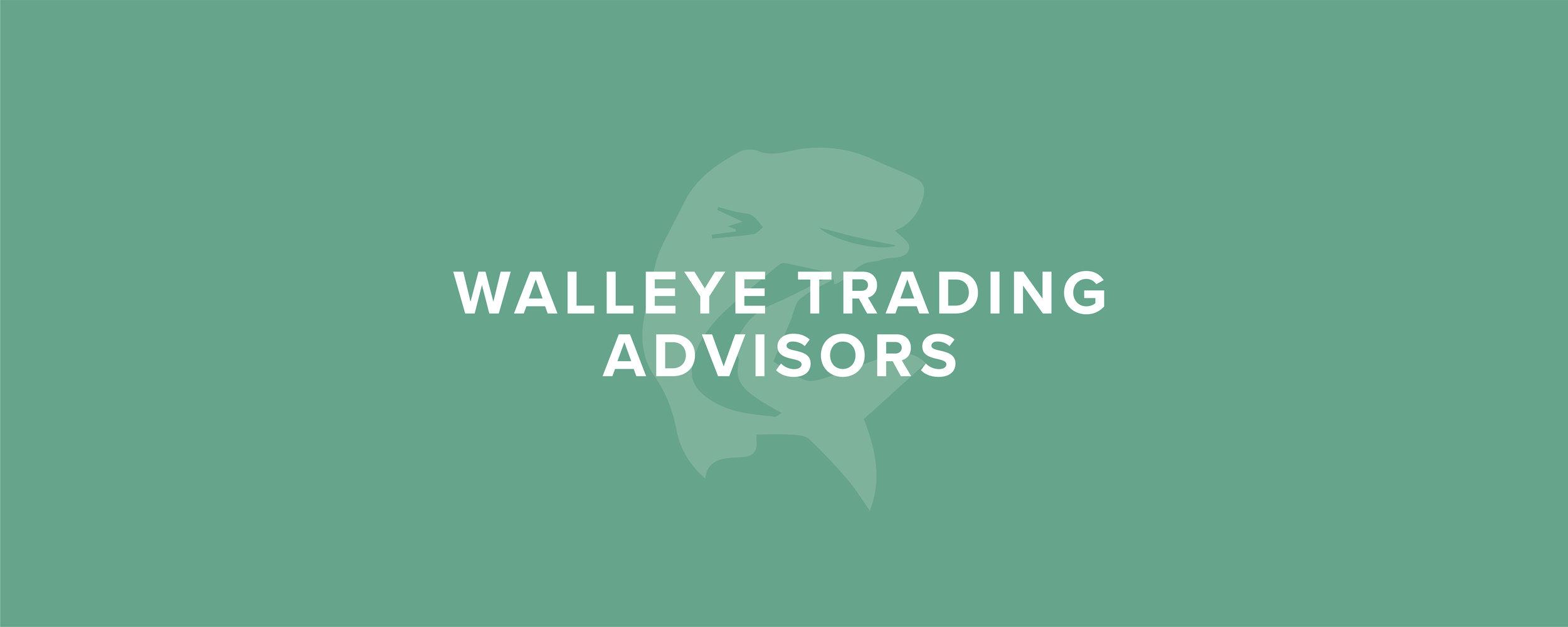 Walleye-Website-Hero-Graphics-13.jpg