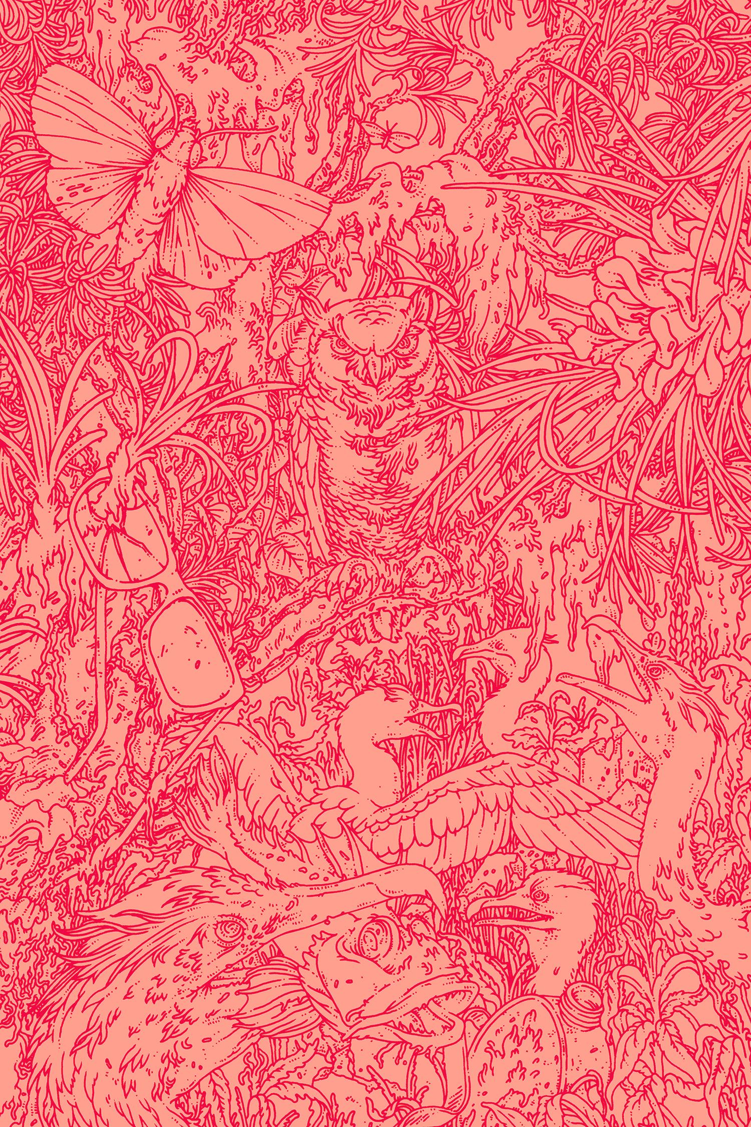 Farrar Straus Giroux. Inside artwork for Jeff Vandermeer's Acceptance. AD Charlotte Strick.