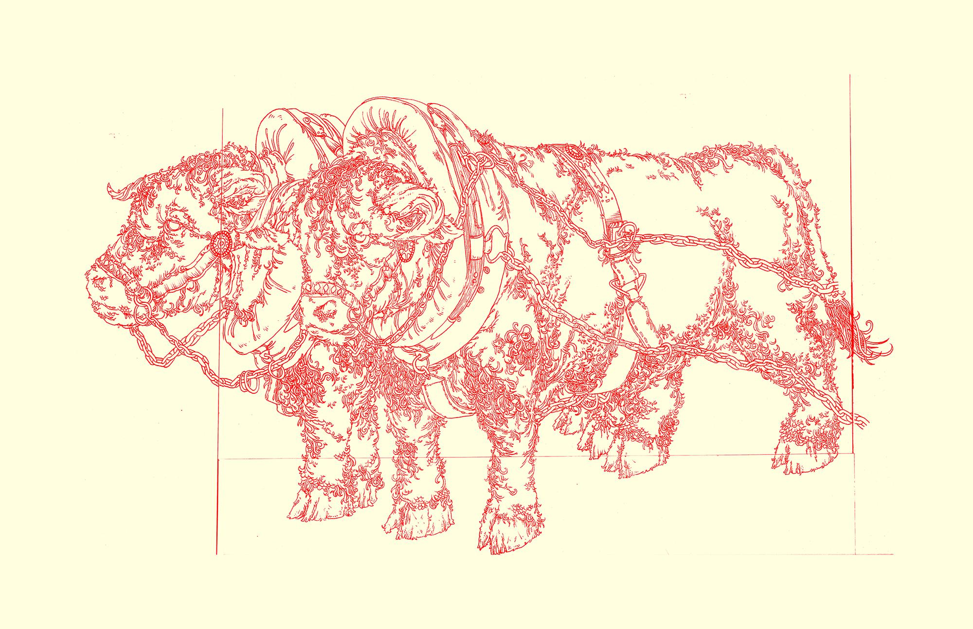 Whiteface Bulls. 2007.