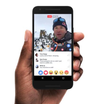 medias sociaux montreal