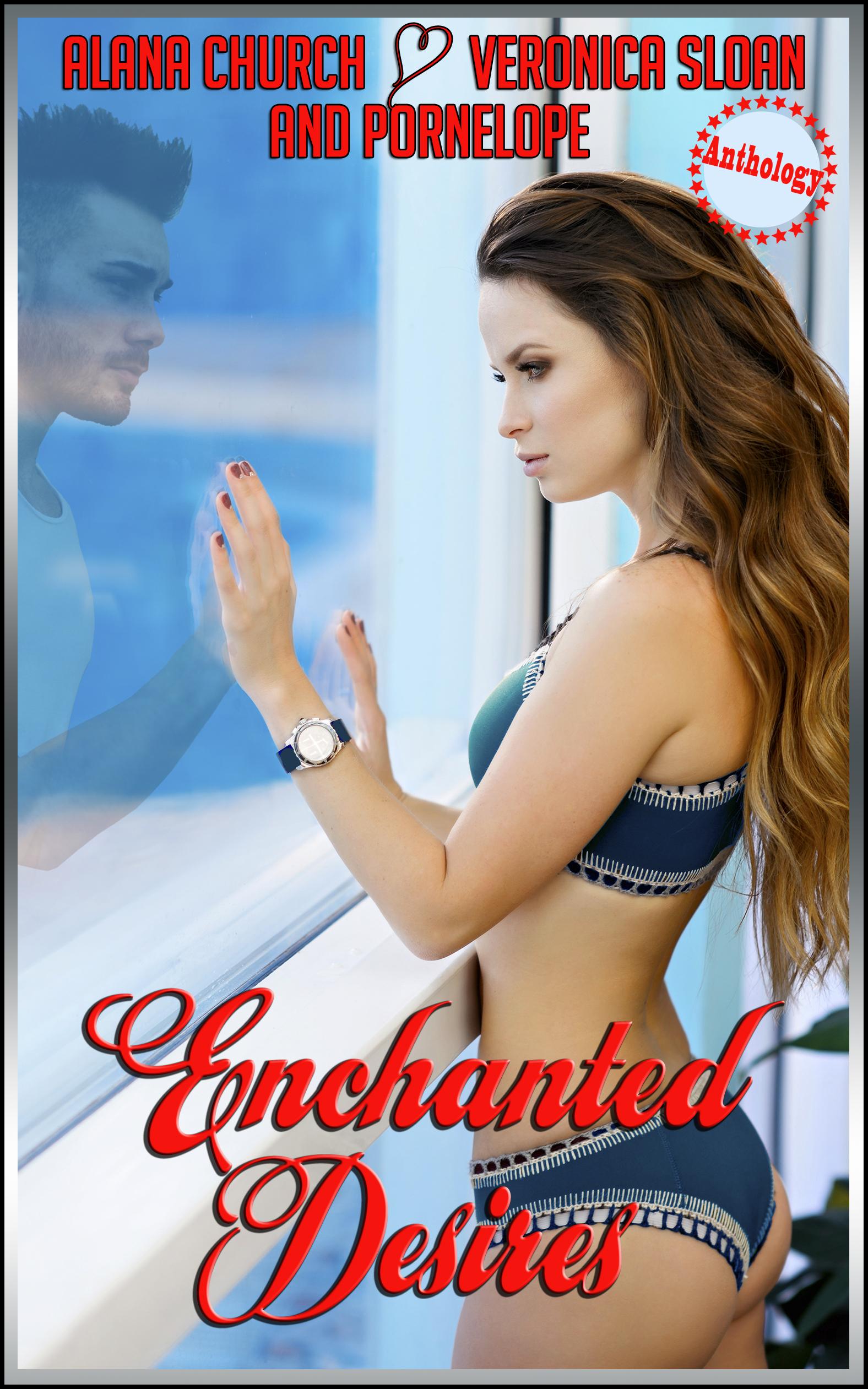 Enchanted-Desires-Cover.jpg