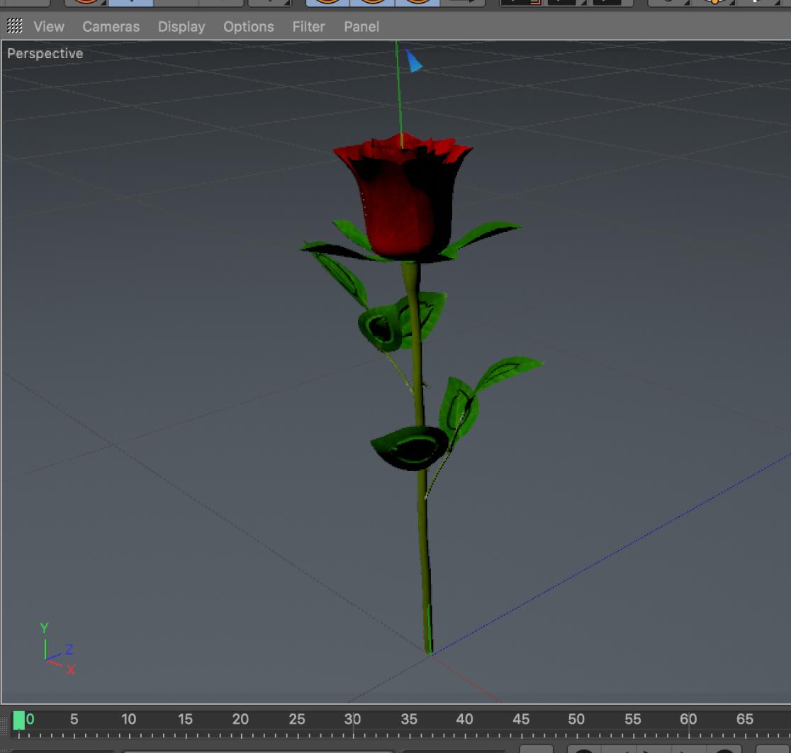 A rose I created using Cinema-4D