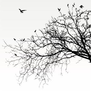 Inspiration:  Dormant Child (poem)