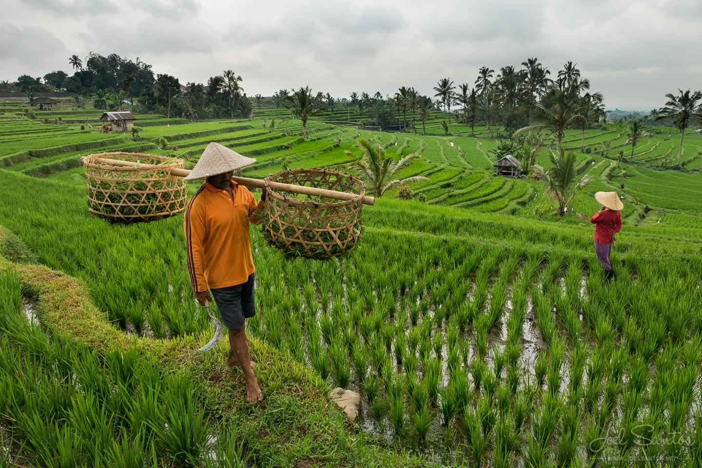 joel-santos-indonesia-45.jpg