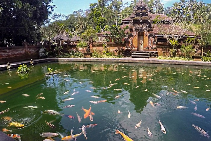 Tirta-Empul-Holy-Water-Temple.jpg