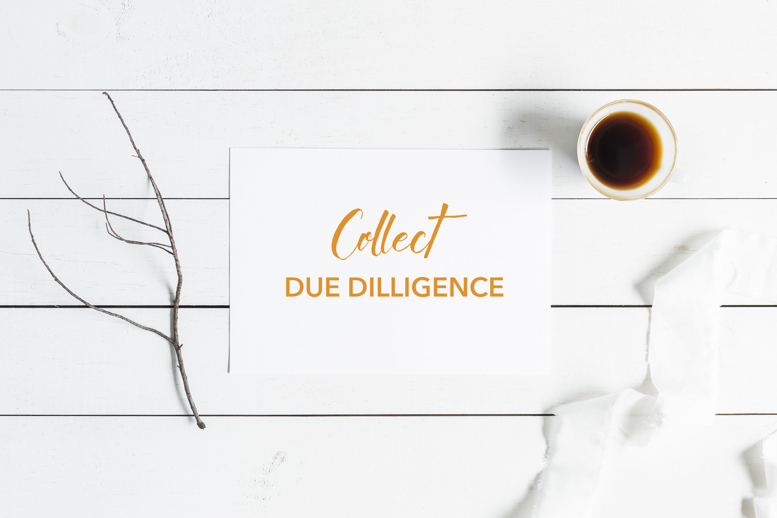 COLLECT & CATALOG  DUE DILIGENCE