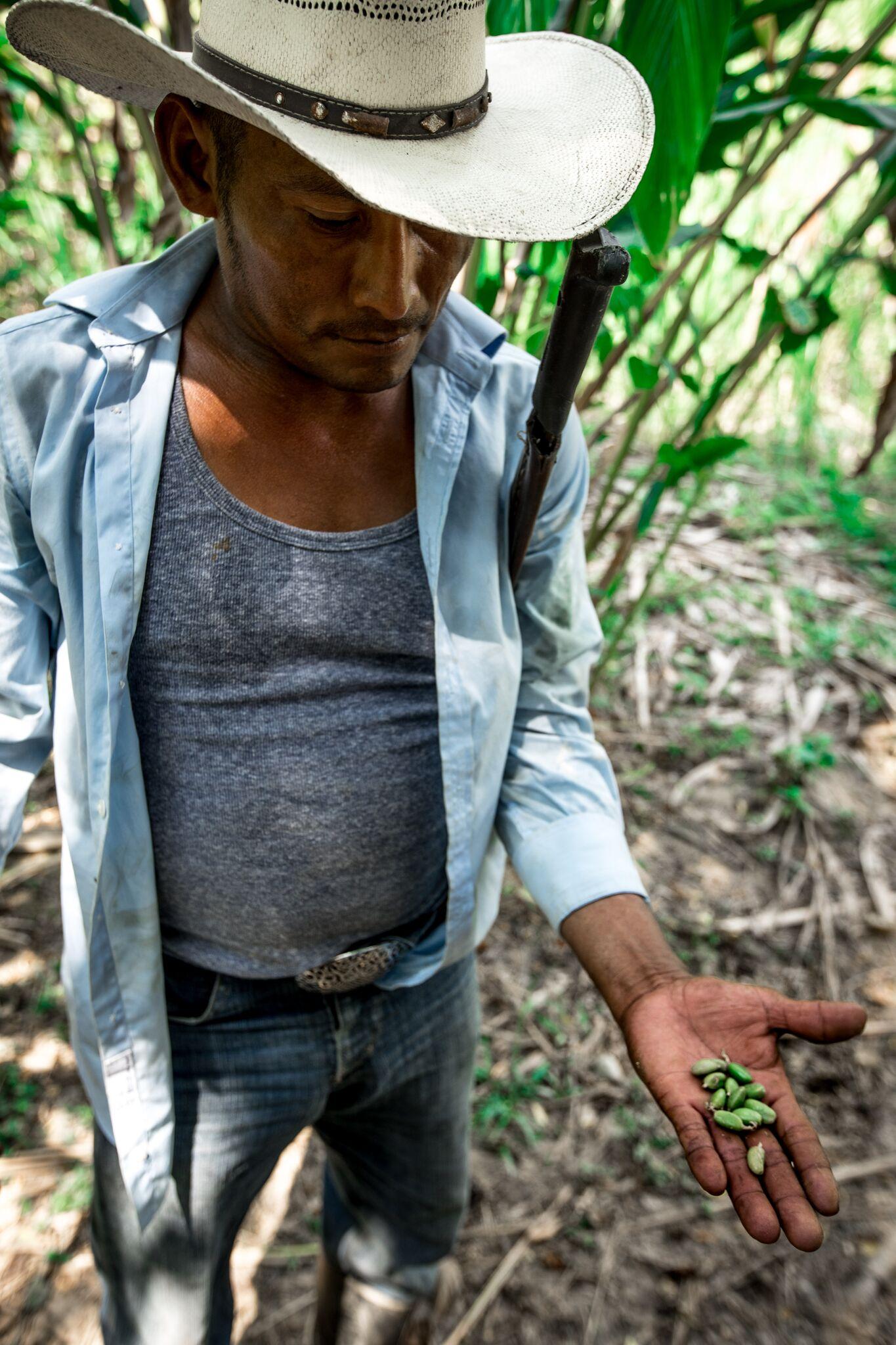 Atlas Unbound Guatemala