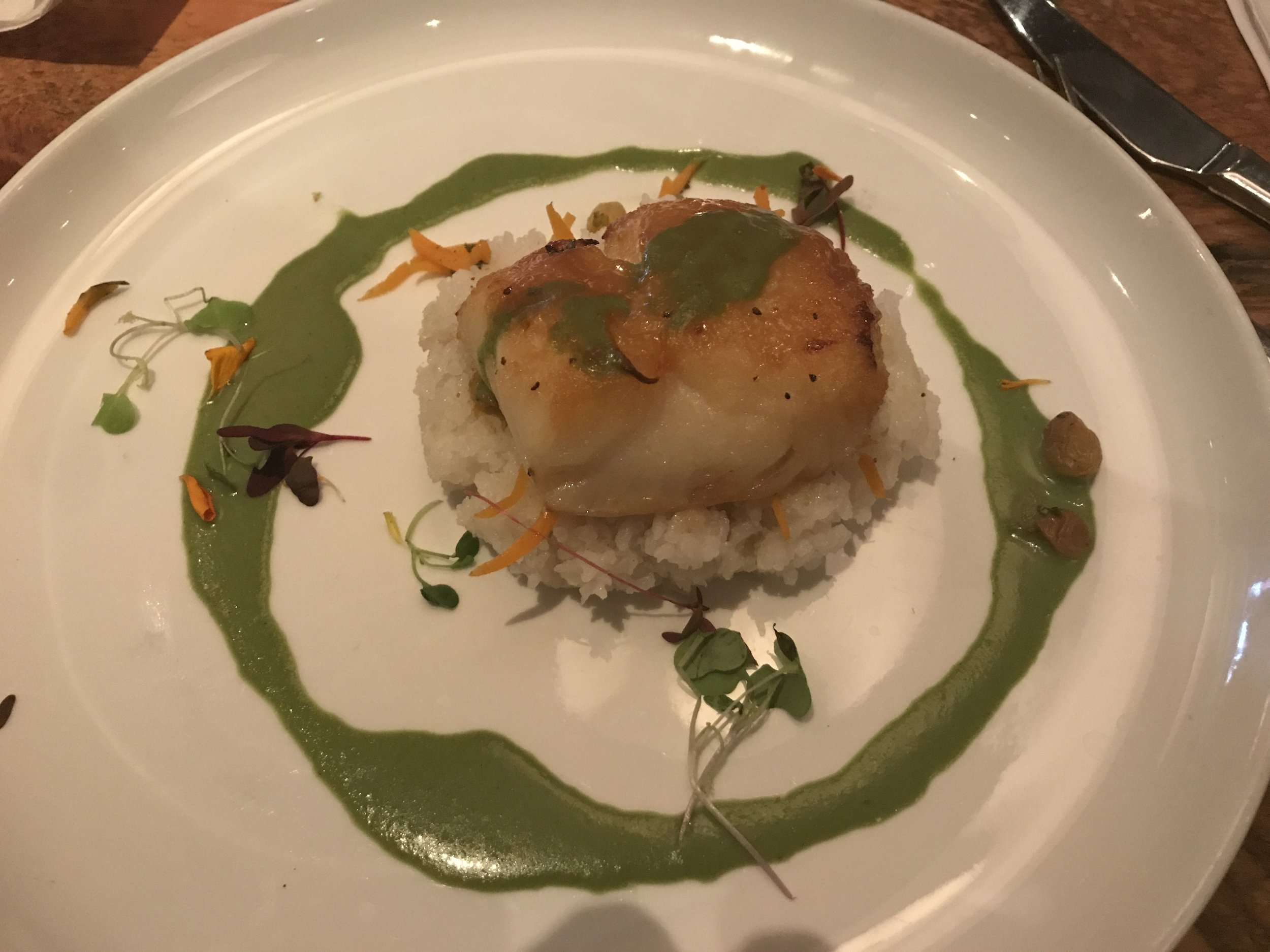 Sea Bass, HobNob, Naples, FL.JPG