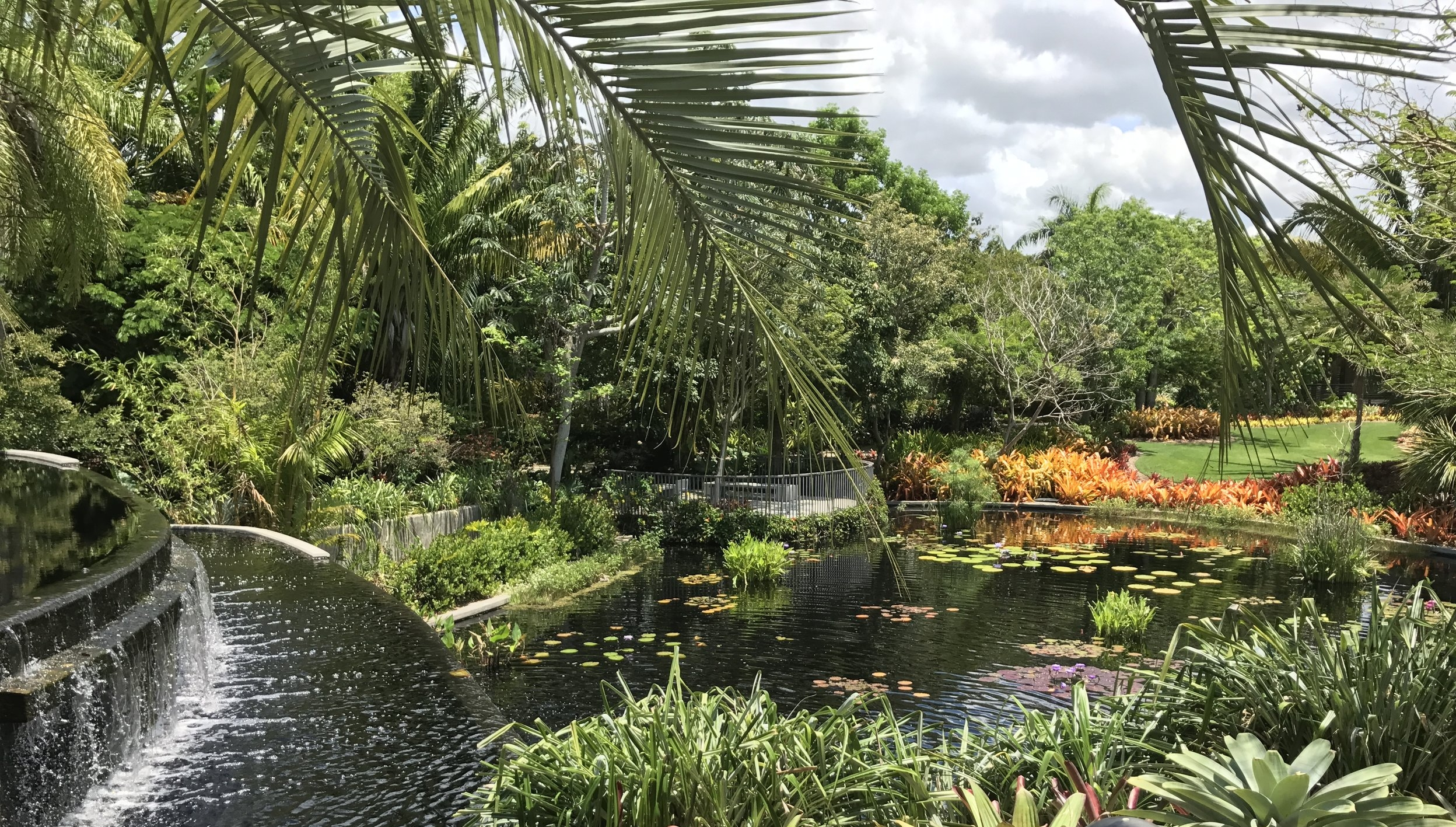 Botanical Garden, Naples, FL Brazilian Garden.JPG