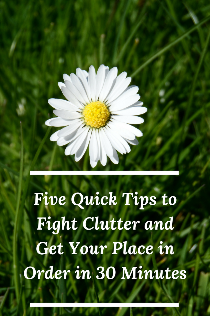 5 Quick Tips to Fight Clutter and Get Your Place in Order in 30 Minutes