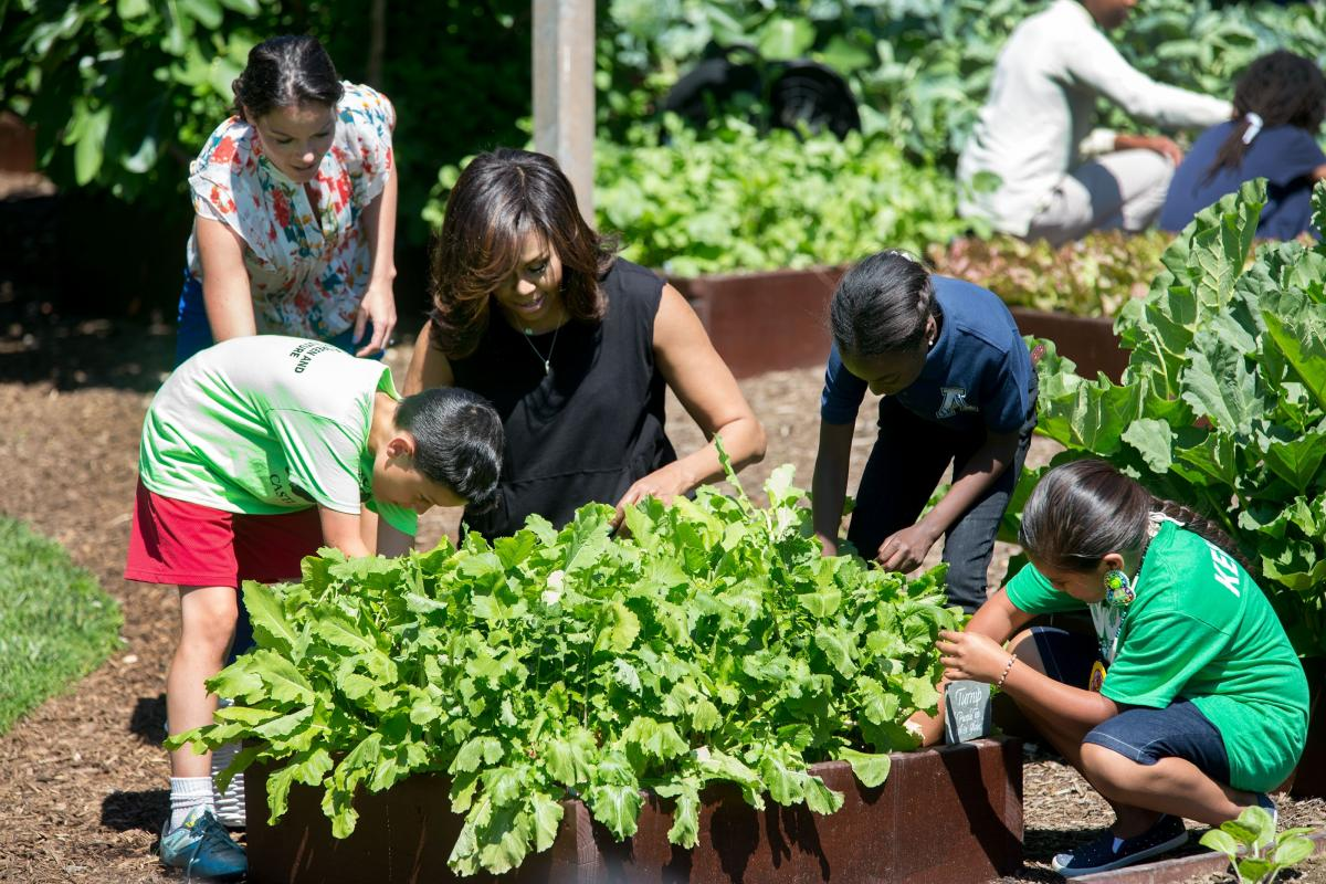Garden Harvest Photo 1.jpg