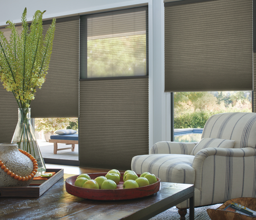 Top Down Bottom Up Motorized Duette Architella Shades