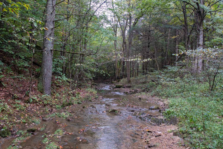 creek vtc (1 of 1).jpg