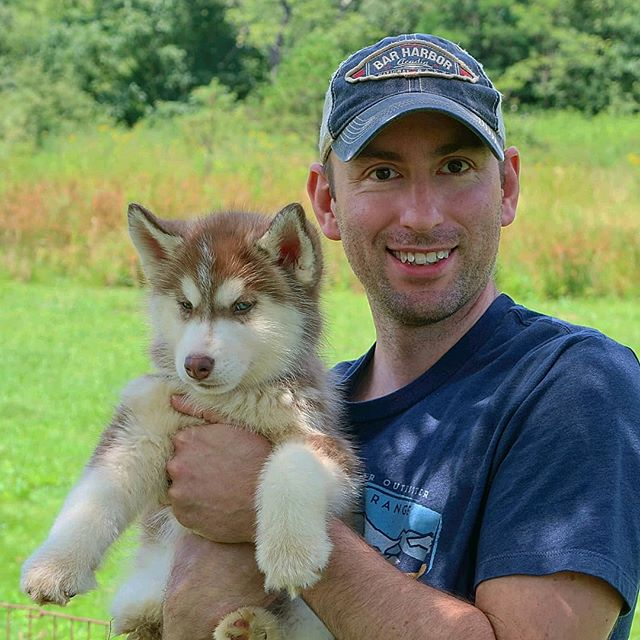 Meet my future hiking budy @everestthehappyhusky 🐾 - #siberianbuskyworld #dogsofinstagram #hikingdog #dogsthathike #ultralightbackpacking #OptOutside