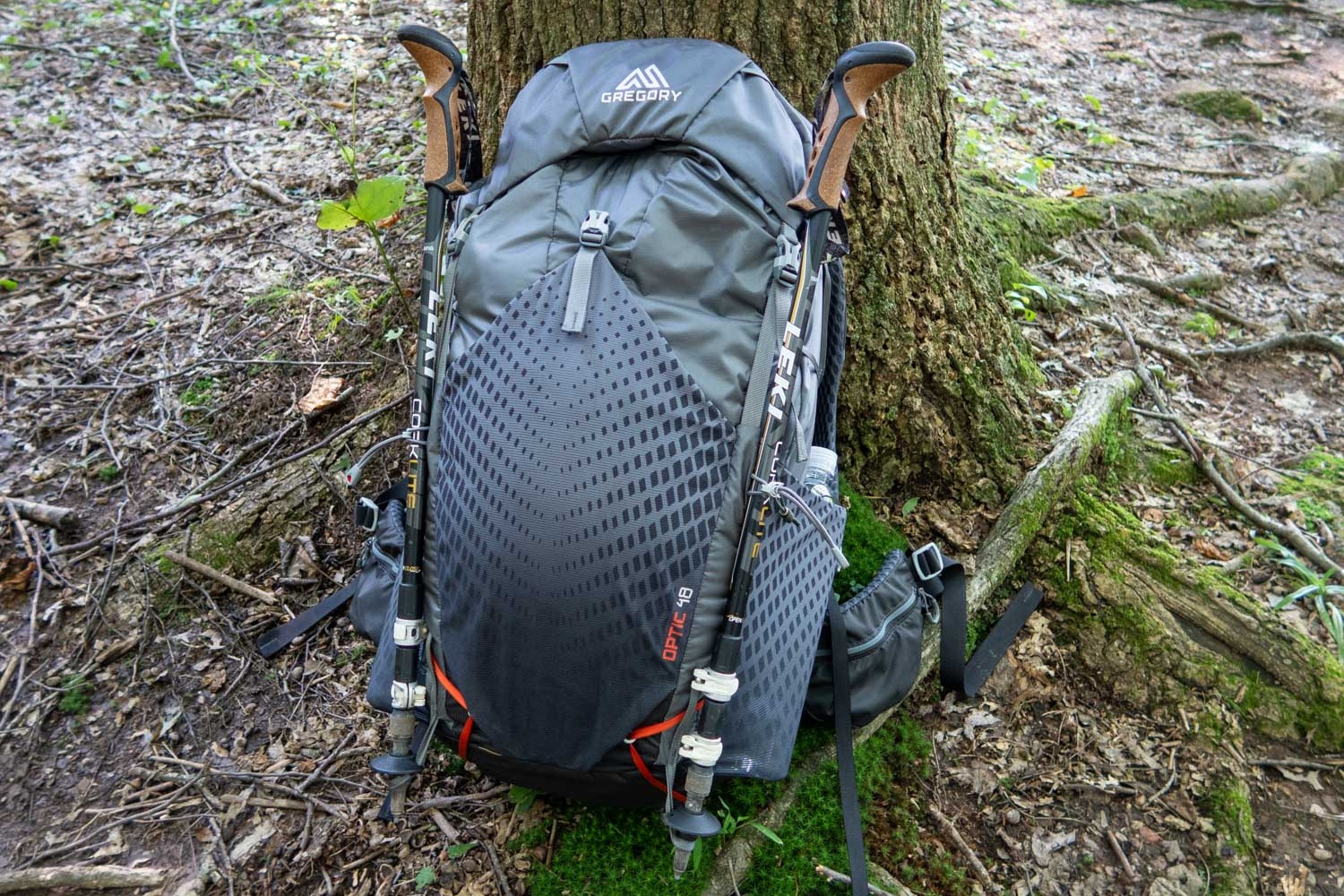 Dual trekking pole/tool attachment system