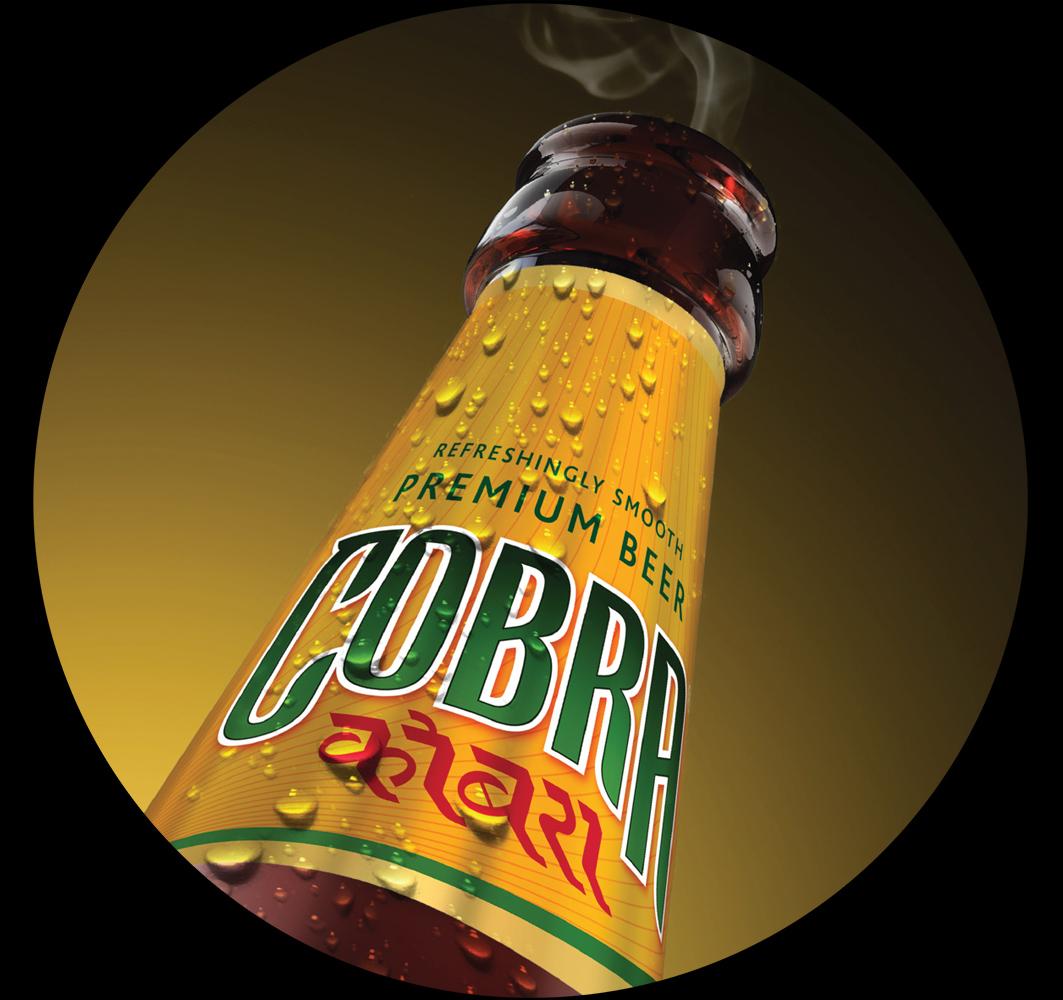 Copy of Cobra case study