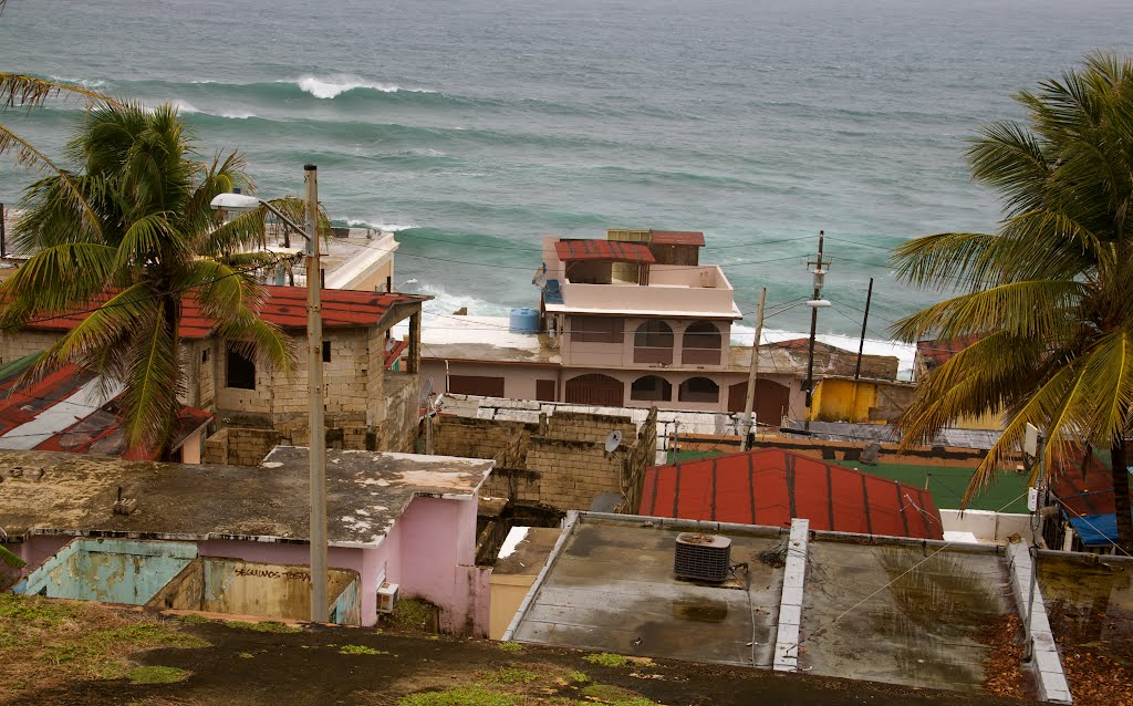 roofs-2.jpg