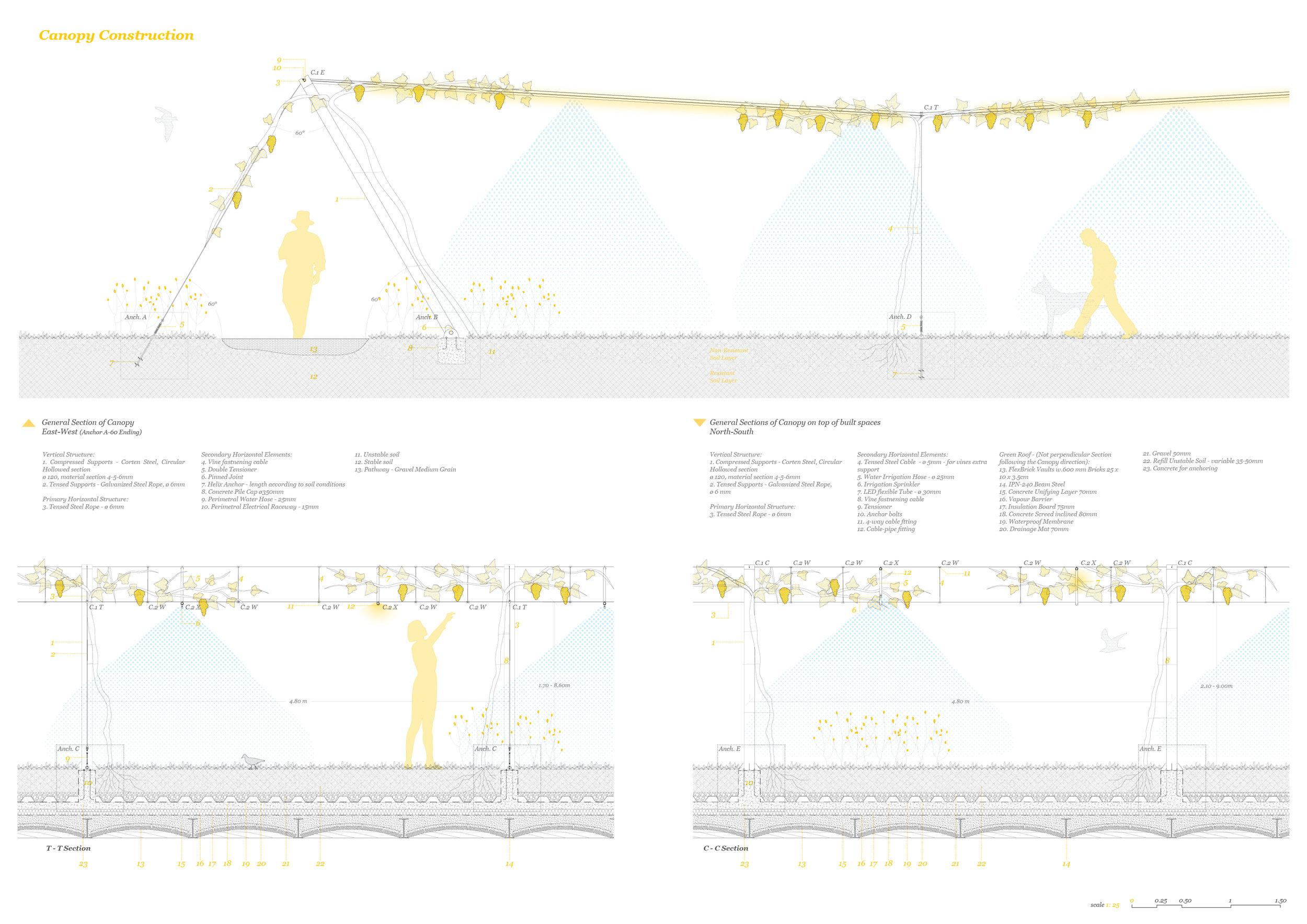 11_LL_Canopy-Construction.jpg