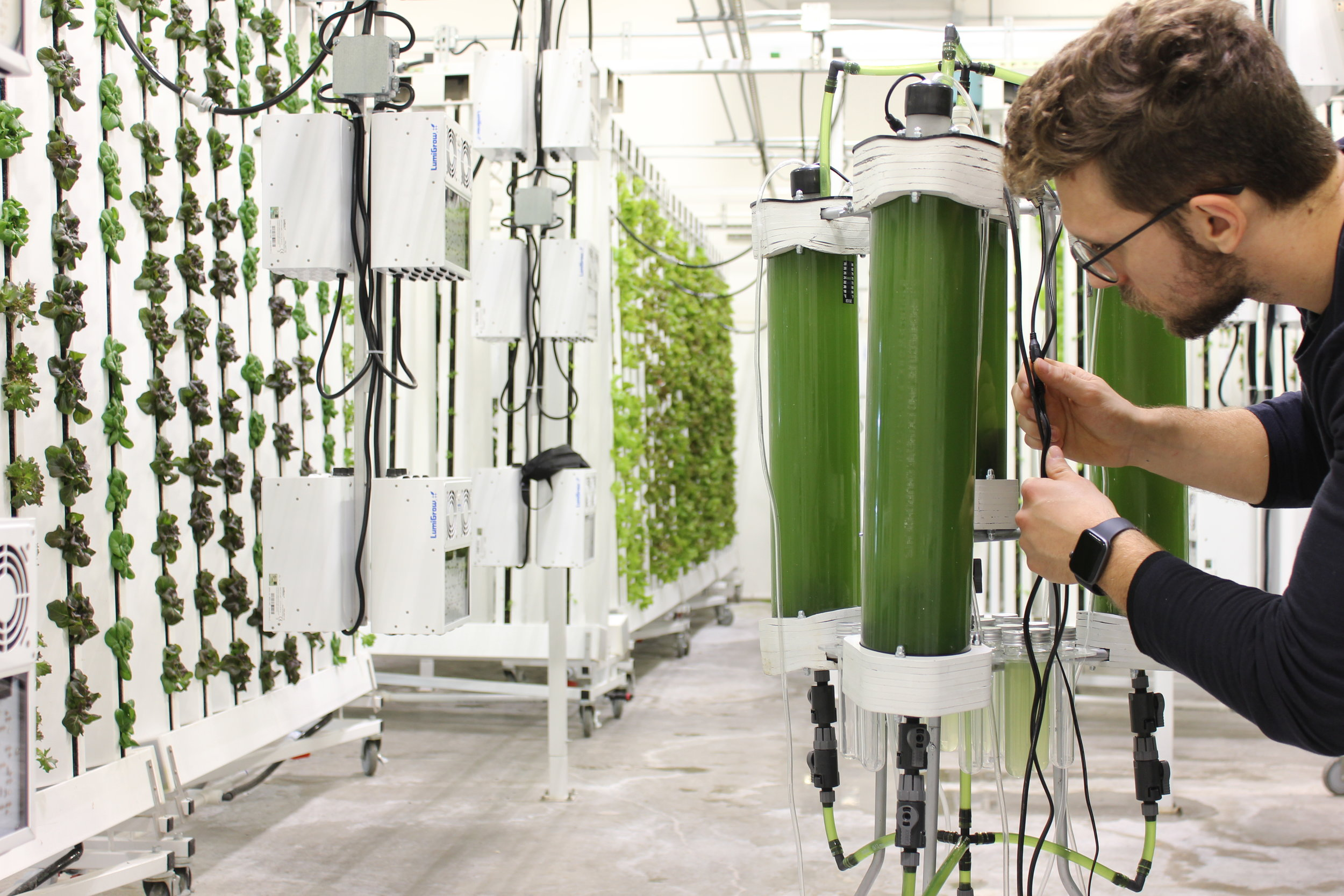 Tiago Vasconcelos - Tiago-Vasconcelos-02-Photobioreactor growth check (1).JPG