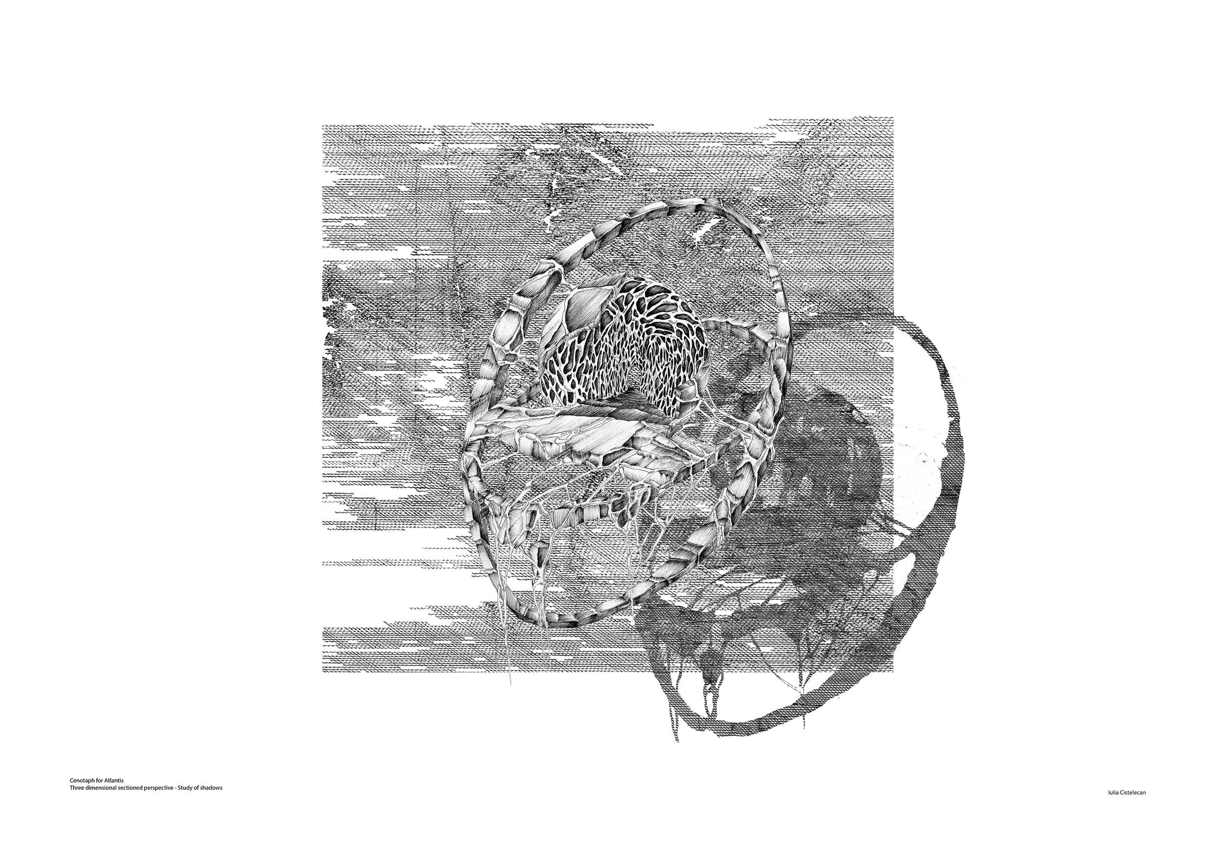 7_1.jpg