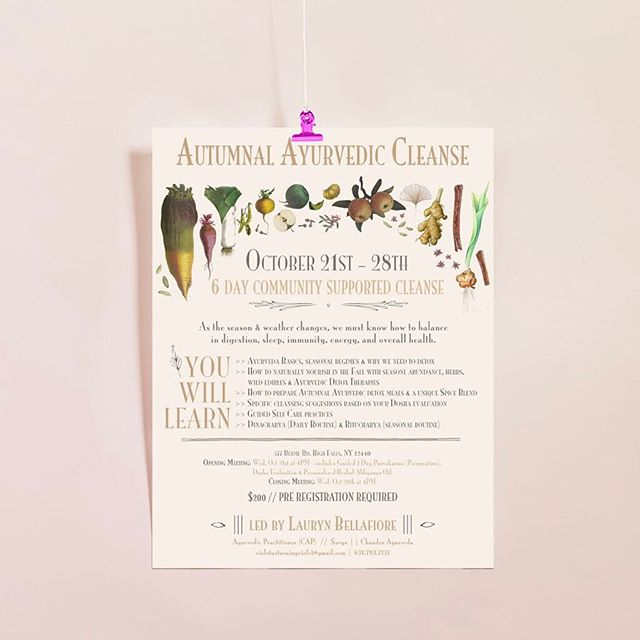 Working on building out my site + organizing my design portfolio. Here's a flyer I created for @laurynbellafiore's Autumnal Ayurvedic Cleanse a couple years back to help the community hit reset on the ojas ✨🍠🍶🍂 . . I love working for local businesses whose missions transcend profit, especially those in the healing arts. The ripple effect is magnificently inspiring 💗 . . #ayurveda #plantsonpink #dsdesign
