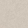 carpet-decor_plush-neutral_beige-floor-godfrey_hirst (1).jpg