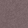 carpet-decor_plush-purple_dawn-floor-godfrey_hirst.jpg