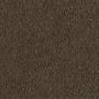 carpet-decor_plush-safari_dust-floor-godfrey_hirst.jpg