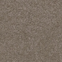 carpet-decor_grande-bayshore-floor-godfrey_hirst.jpg