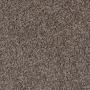 carpet-timeless-cocotone_stipple-floor-godfrey_hirst.jpg