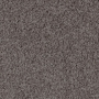 carpet-timeless-fudge-floor-godfrey_hirst.jpg