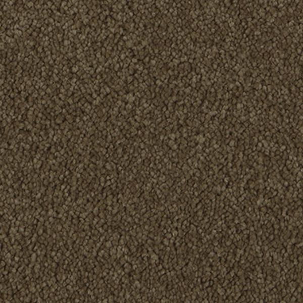 carpet-apolloridge-burnishedsuede-floor-sprucedup.jpg