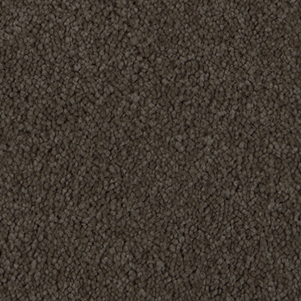 carpet-apolloridge-mystic-brown-floor-sprucedup.jpg
