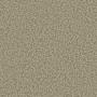 carpet-summertones-doeskin-floor-godfrey_hirst_carpets.jpg