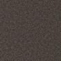 carpet-natural_trends-dark_shale-floor-godfrey_hirst_carpet.jpg