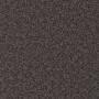 carpet-natural_trends-dark_taupe-floor-godfrey_hirst_carpet.jpg