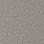 carpet-natural_trends-silver_mist-floor-godfrey_hirst_carpet.jpg