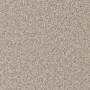 carpet-natural_trends-bone-floor-godfrey_hirst_carpet.jpg