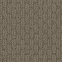 carpet-lakewood-hazelnut-floor-godfrey_hirst.jpg