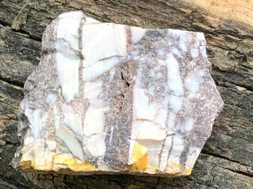 Zebra Jasper - Stone of Contentment