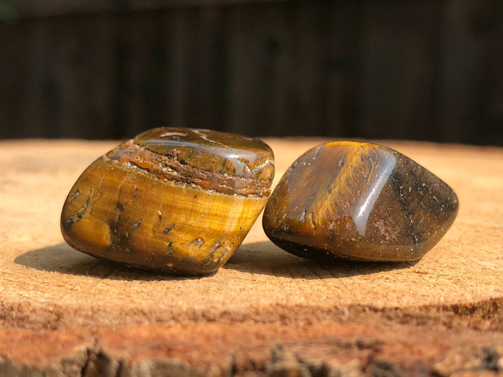 Tiger Eye Id pic.jpg