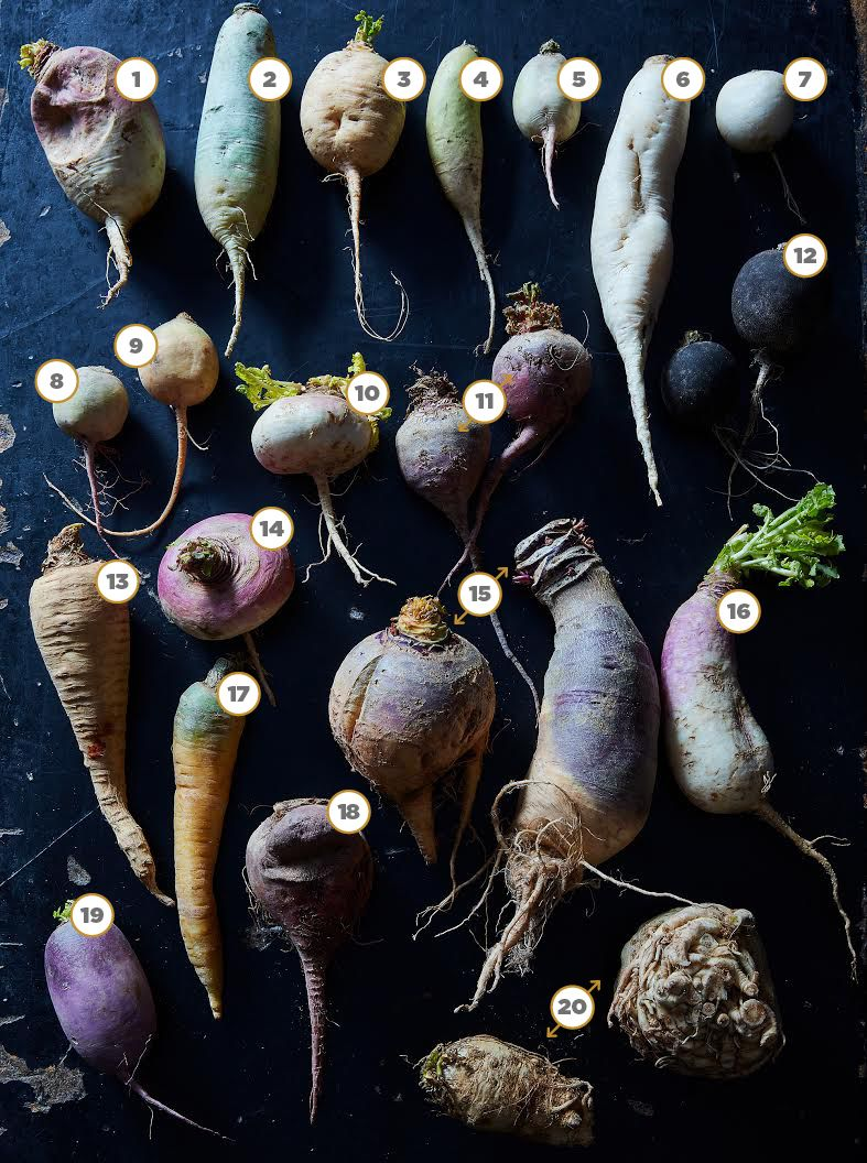 Can you identify these gnarly roots? (Hint: No. 17 is a carrot.)