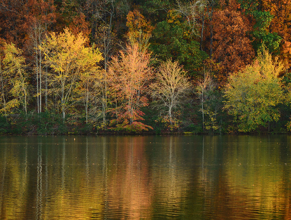 Fall Miller Lake, Dacula, GA October, 2016
