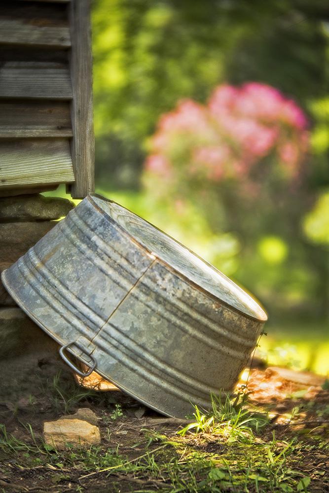 Wash Historic Jarrell Plantation June, 2018