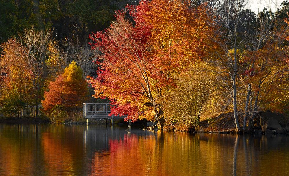 Fall Dock Miller Lake, Dacula, GA November, 2016