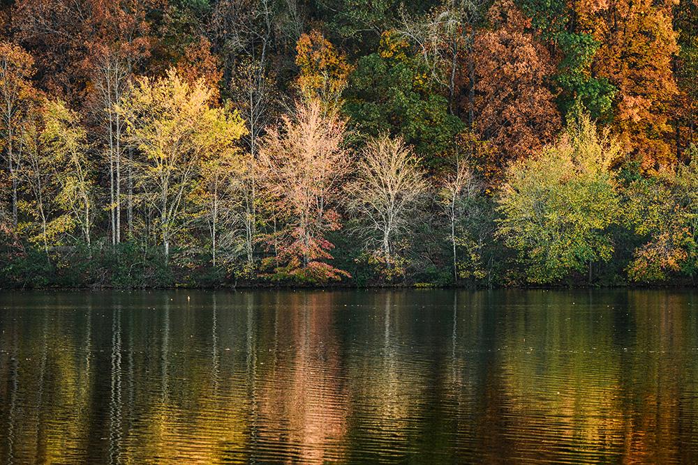 Rainbow Road Miller Lake, Dacual, GA Fall 2016