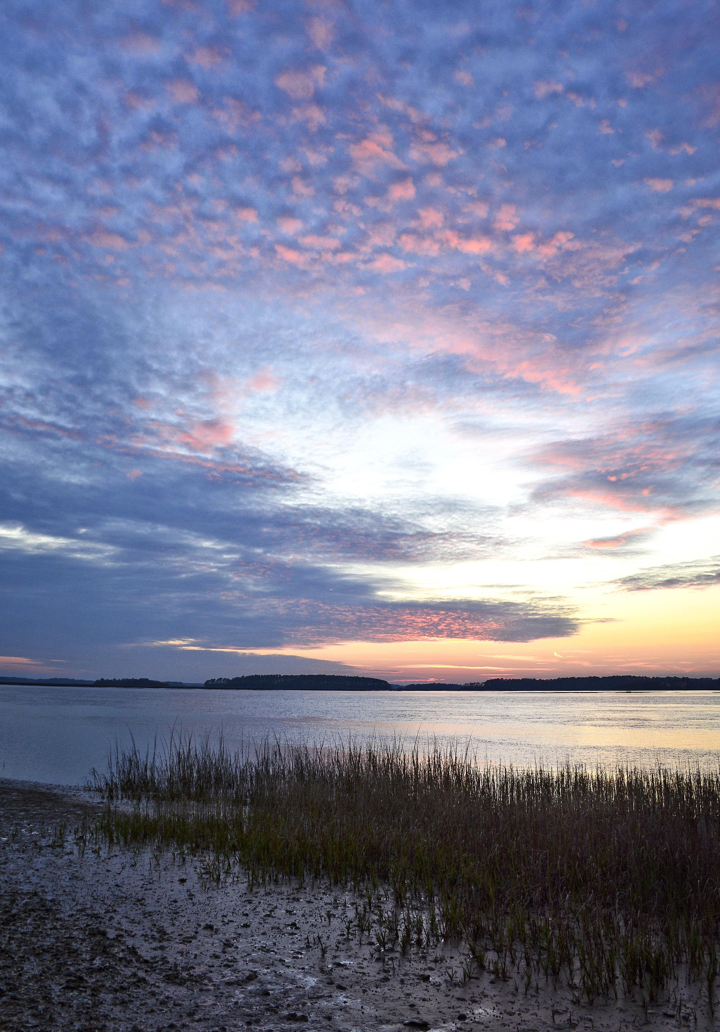 Pinckney Nature Preserve Hilton Head Island February, 2017